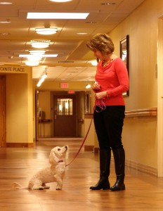 Volunteering at a Senior Center with Pets